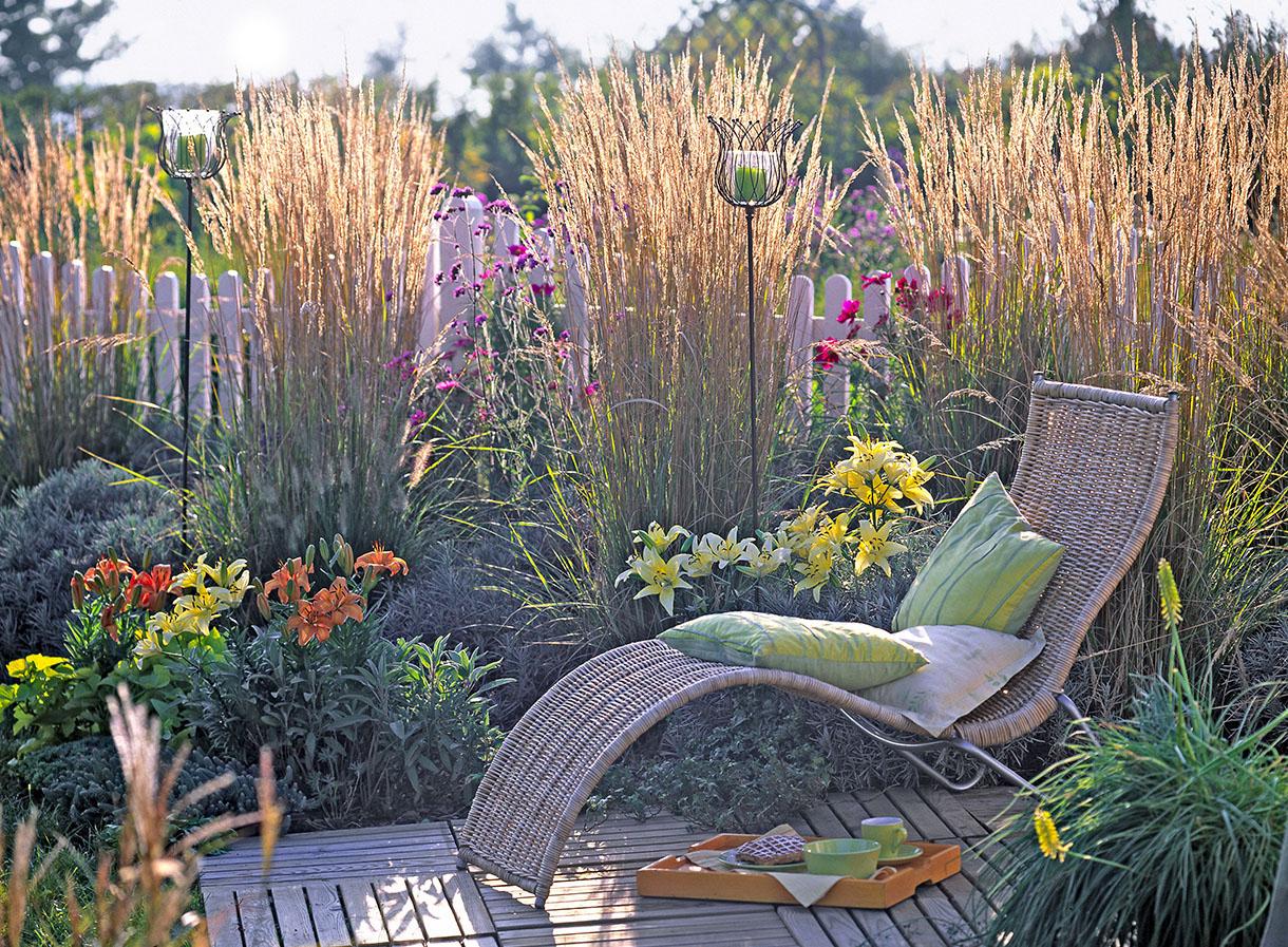 11 Idées De Brise-Vue Pour Jardin [Plante, Haie, Bambou ... avec Idee Brise Vue Jardin