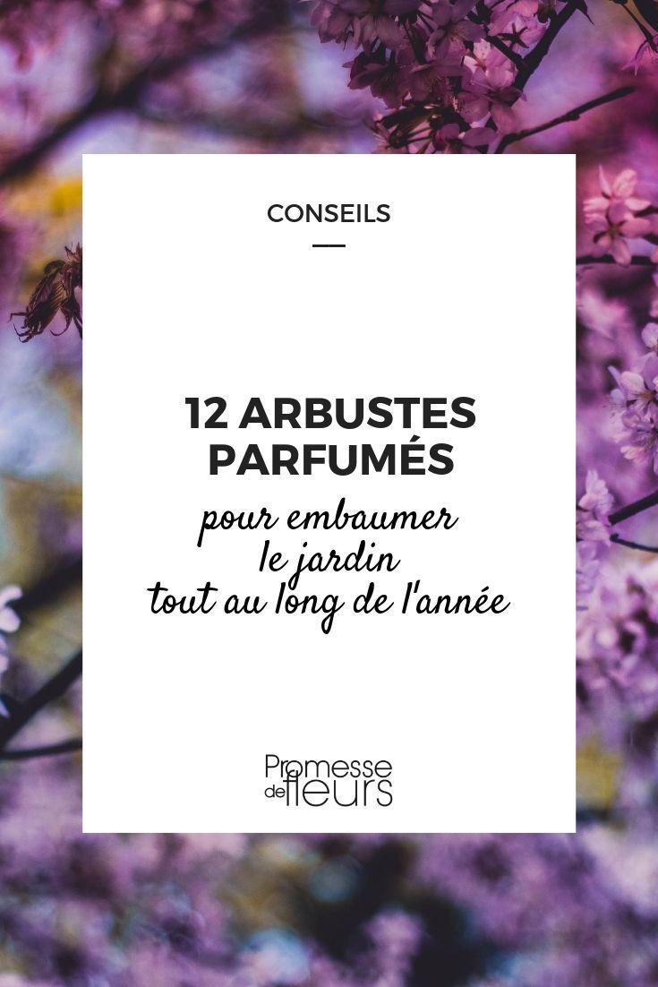 12 Arbustes Parfumés Pour Un Jardin Odorant Toute L'année ... destiné Arbustes Decoration Jardin