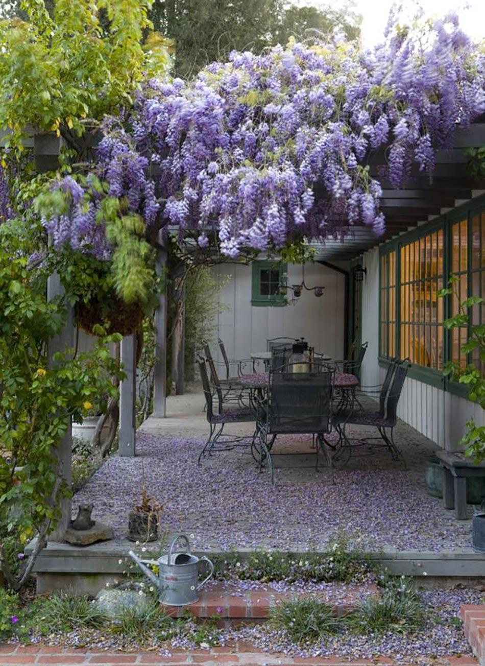 12 Exemples D'aménagement Jardin Avec Des Glycines | Design ... avec Exemple D Aménagement De Jardin