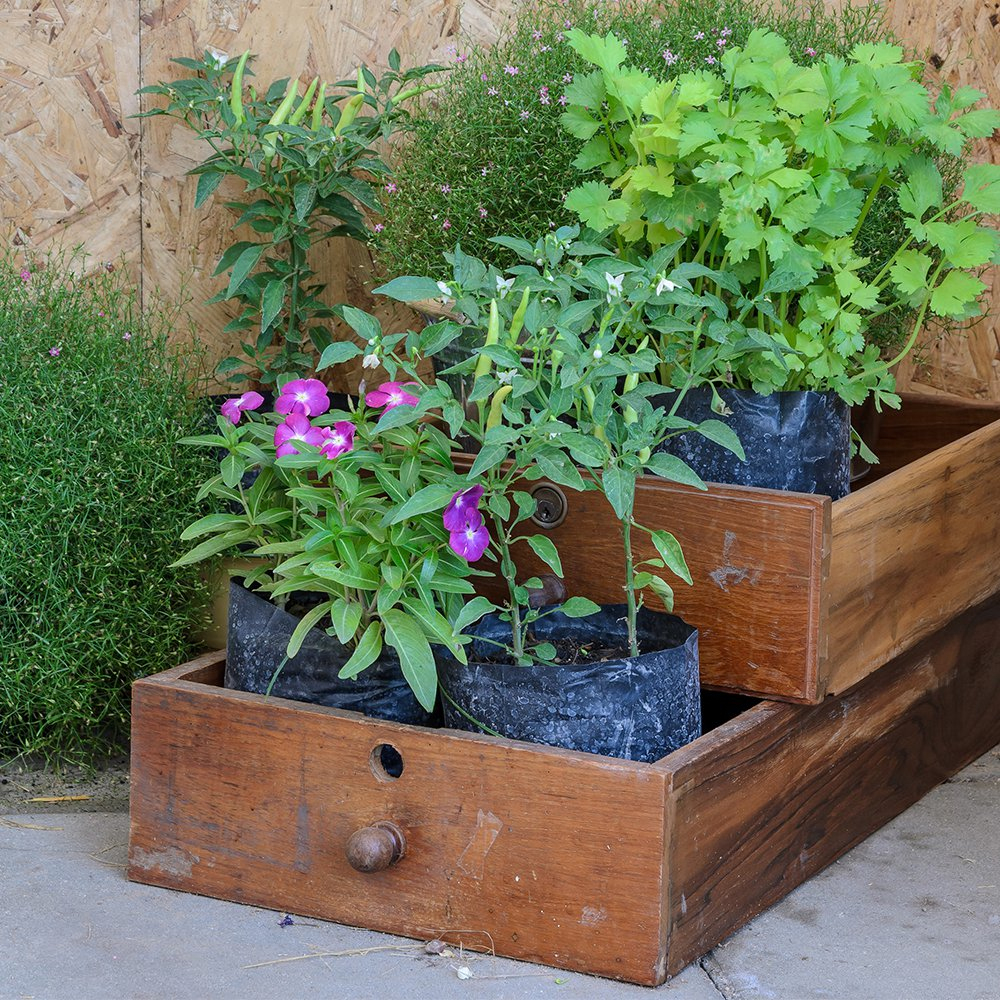 15 Idées Déco Pour Recycler Ses Vieux Tiroirs - Magazine ... serapportantà Astuce Deco Jardin Recup