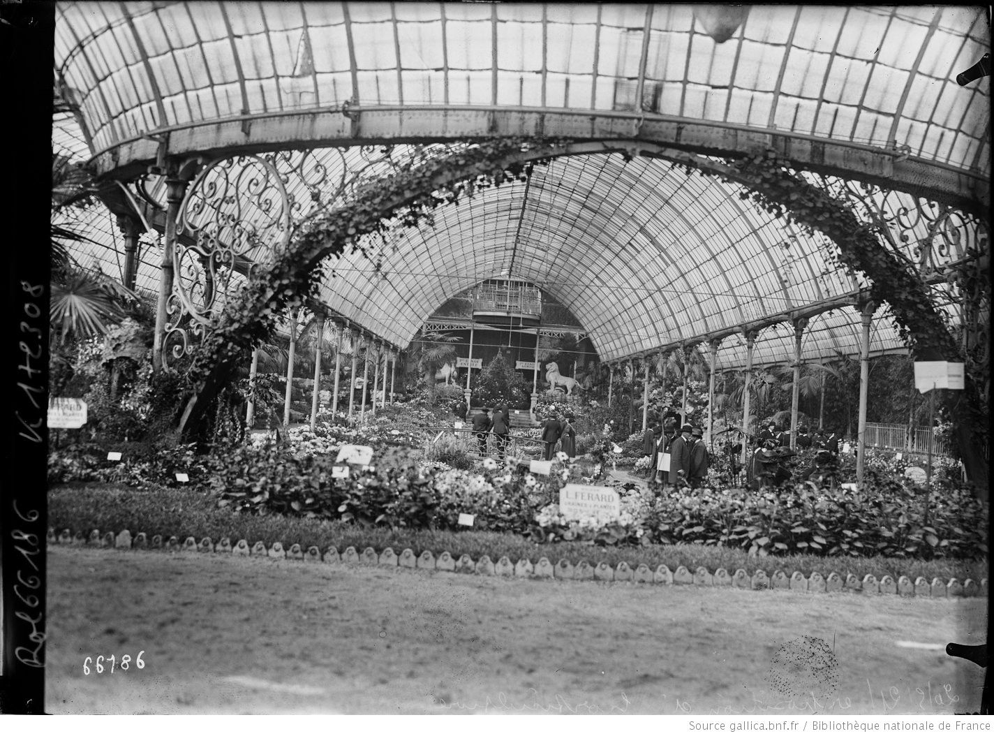 20/5/21, Exposition D'horticulture [Palmarium Du Jardin D ... dedans Exposition Serre De Jardin