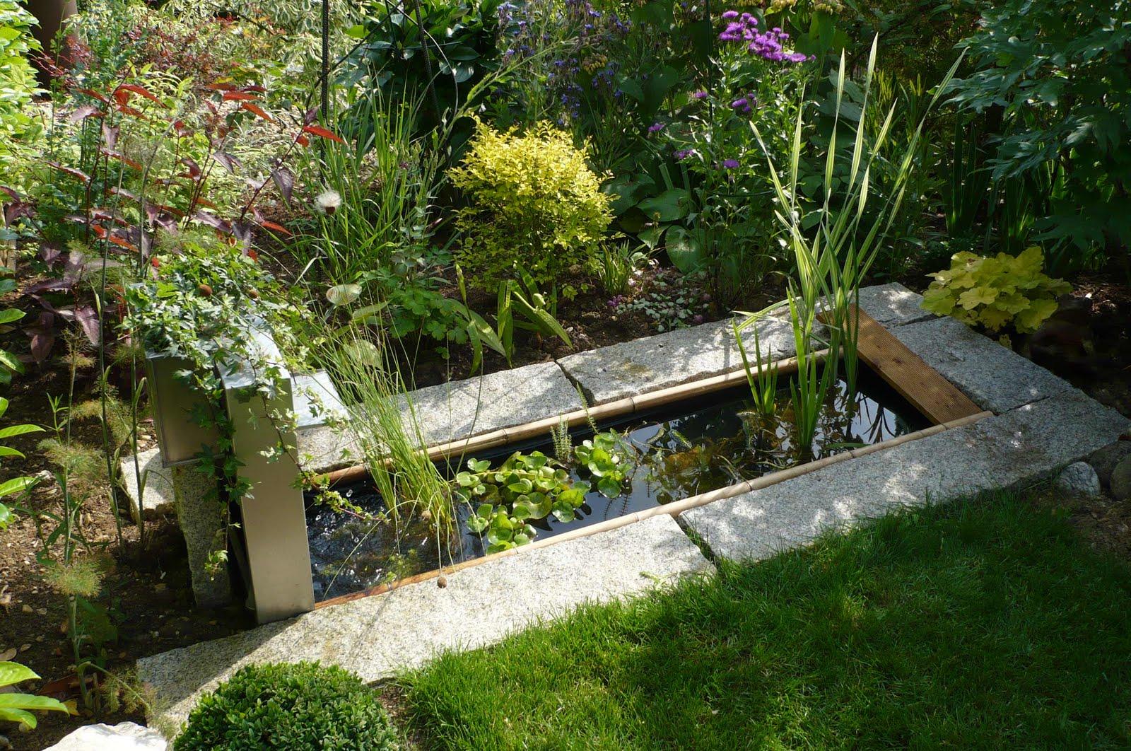4 Moyens D'introduire Votre Plan D'eau Au Jardin | Jardinier ... intérieur Bassin De Jardin Rectangulaire