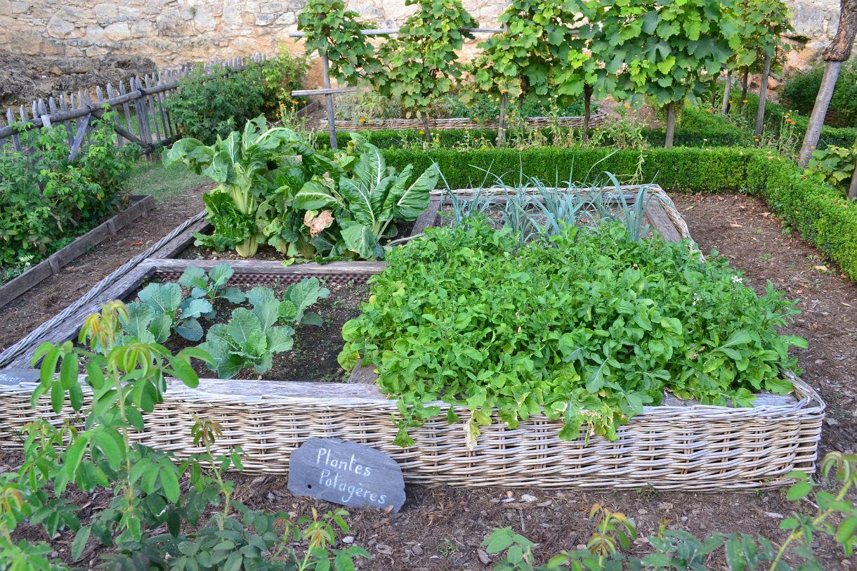 4570Book   Clipart Fines Herbes Potager In Pack #6393 intérieur Jardin En Pots Potager