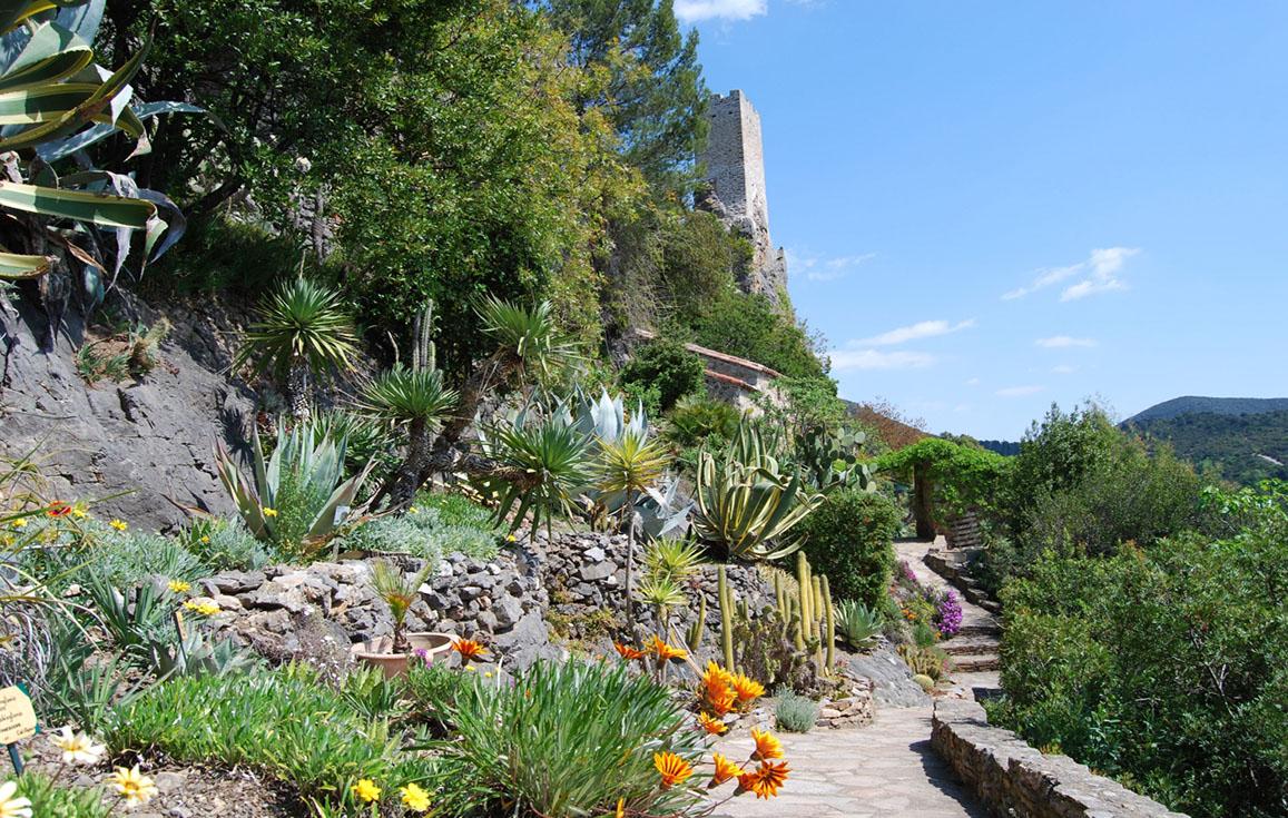 6 Plantes À Choisir Pour Un Beau Jardin Méditerranéen ... destiné Exemple De Jardin Méditerranéen