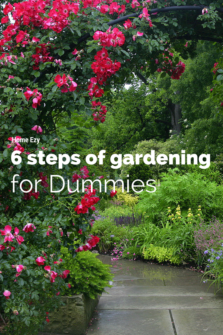 6 Steps Of Gardening For Dummies From Home Ezy Http ... à Jardiner Pour Les Nuls