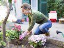 7 Idées D'aménagement Pour Jardin Pas Chères   Envie De Plus à Aménagement Jardin Pas Cher