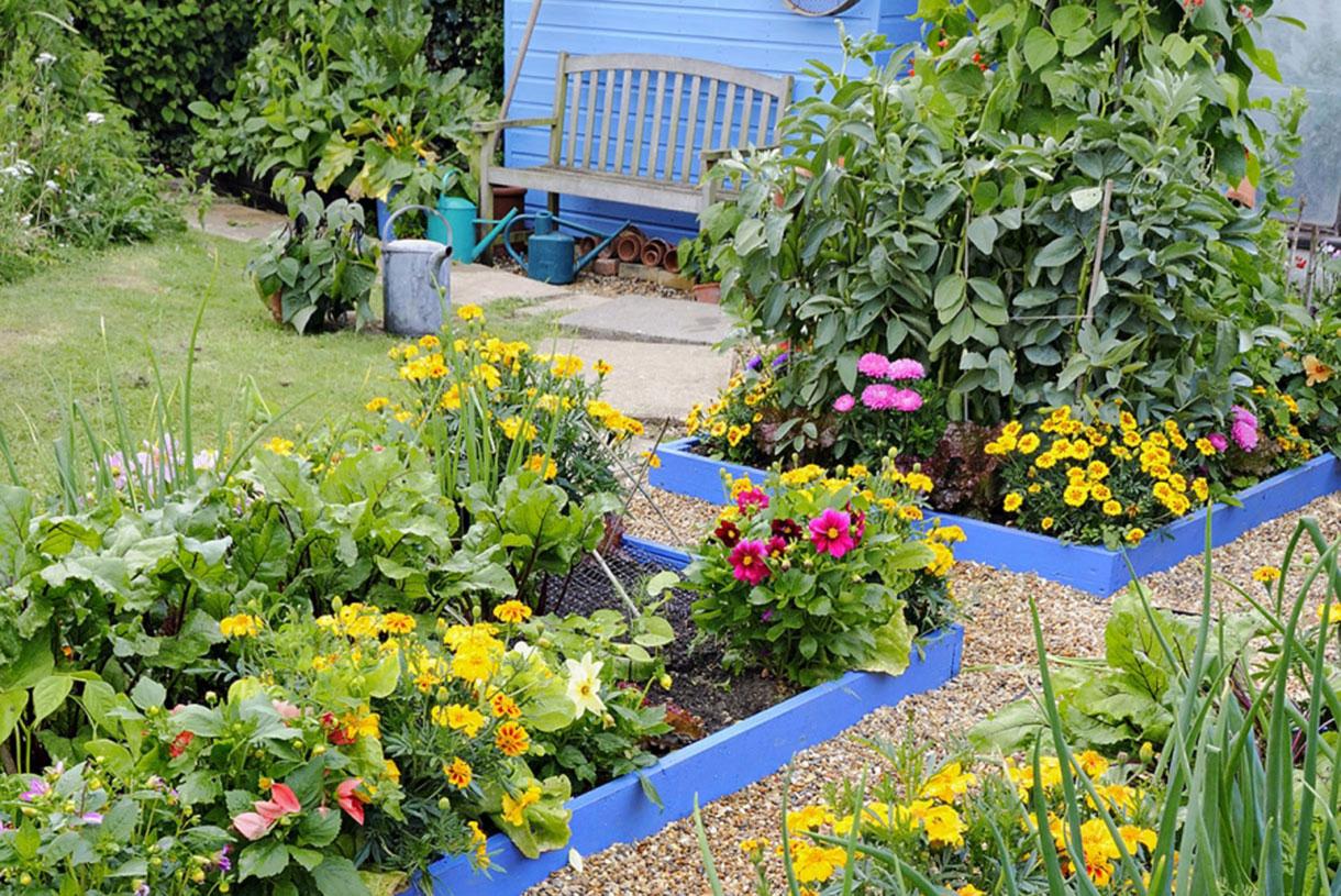 8 Bordures Pratiques Et Charmantes avec Bordure Jardin Pas Cher
