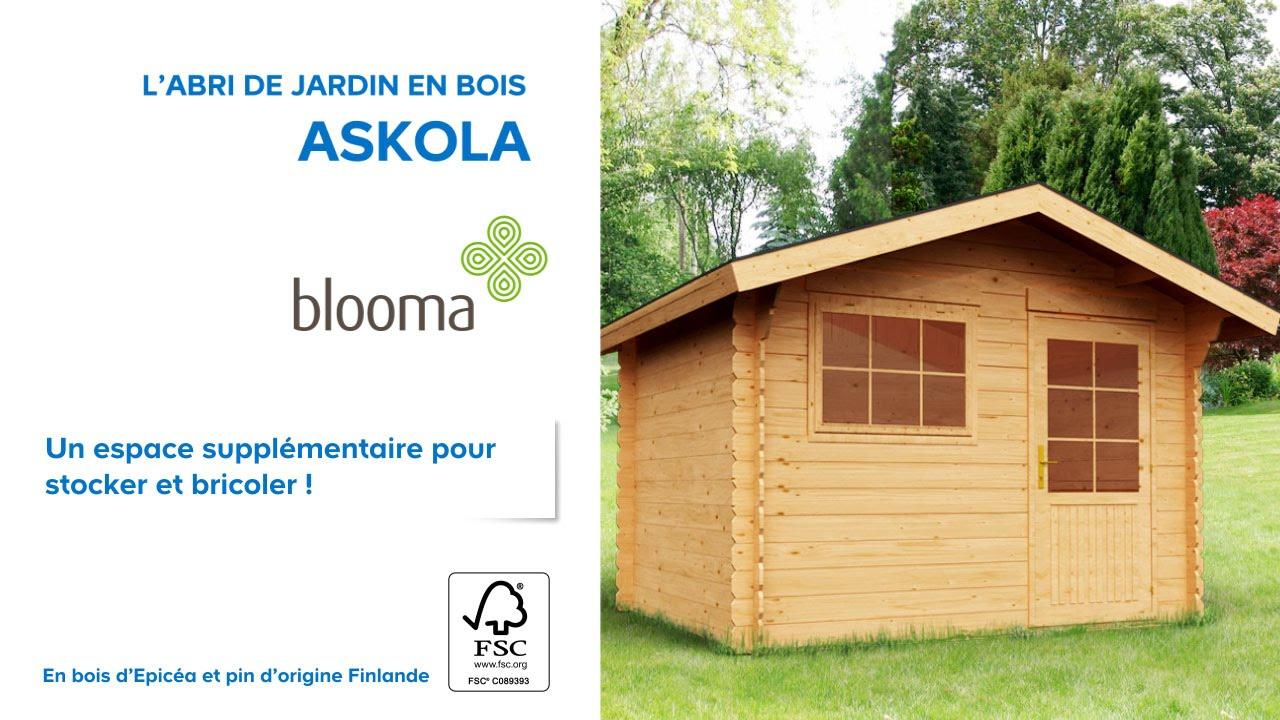 Abri De Jardin En Bois Askola Blooma (610707) Castorama concernant Toiture Abri De Jardin Castorama