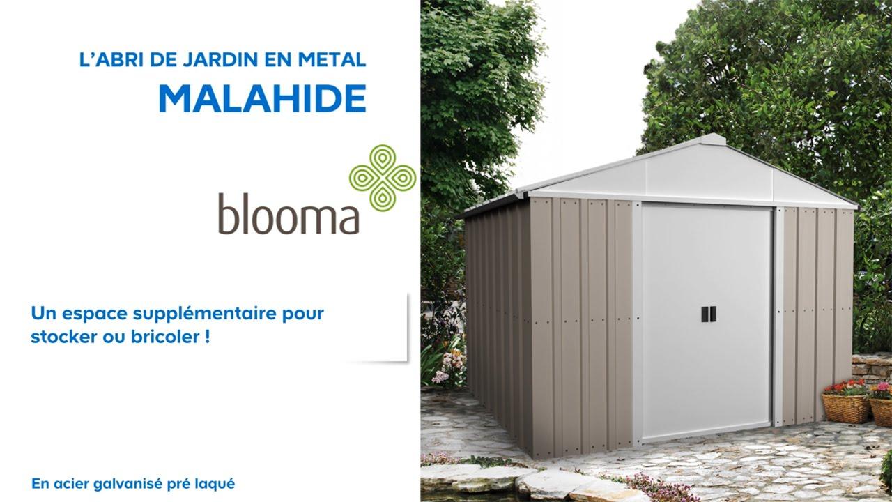 Abri De Jardin En Mtal Malahide Blooma Castorama Intéressant ... dedans Abri De Jardin Metal Castorama