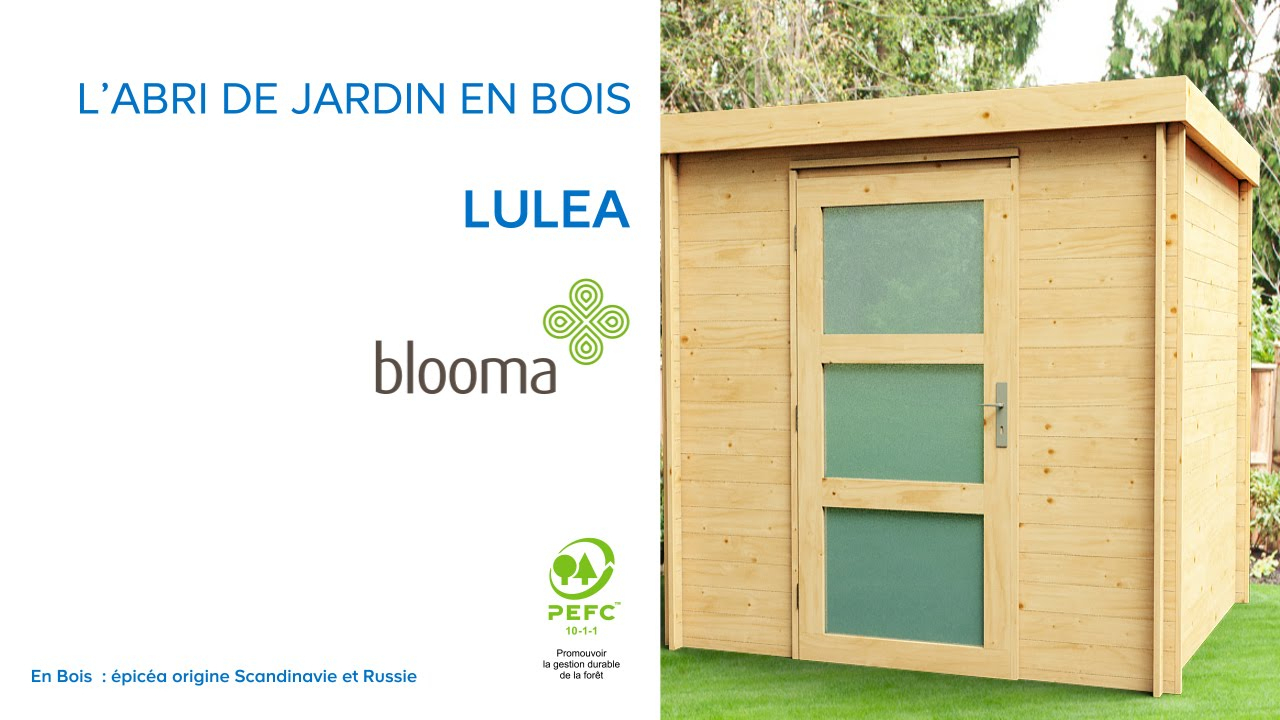 Abri De Jardin Toit Plat Luléa Blooma (676174) Castorama avec Abri De Jardin En Bois Castorama