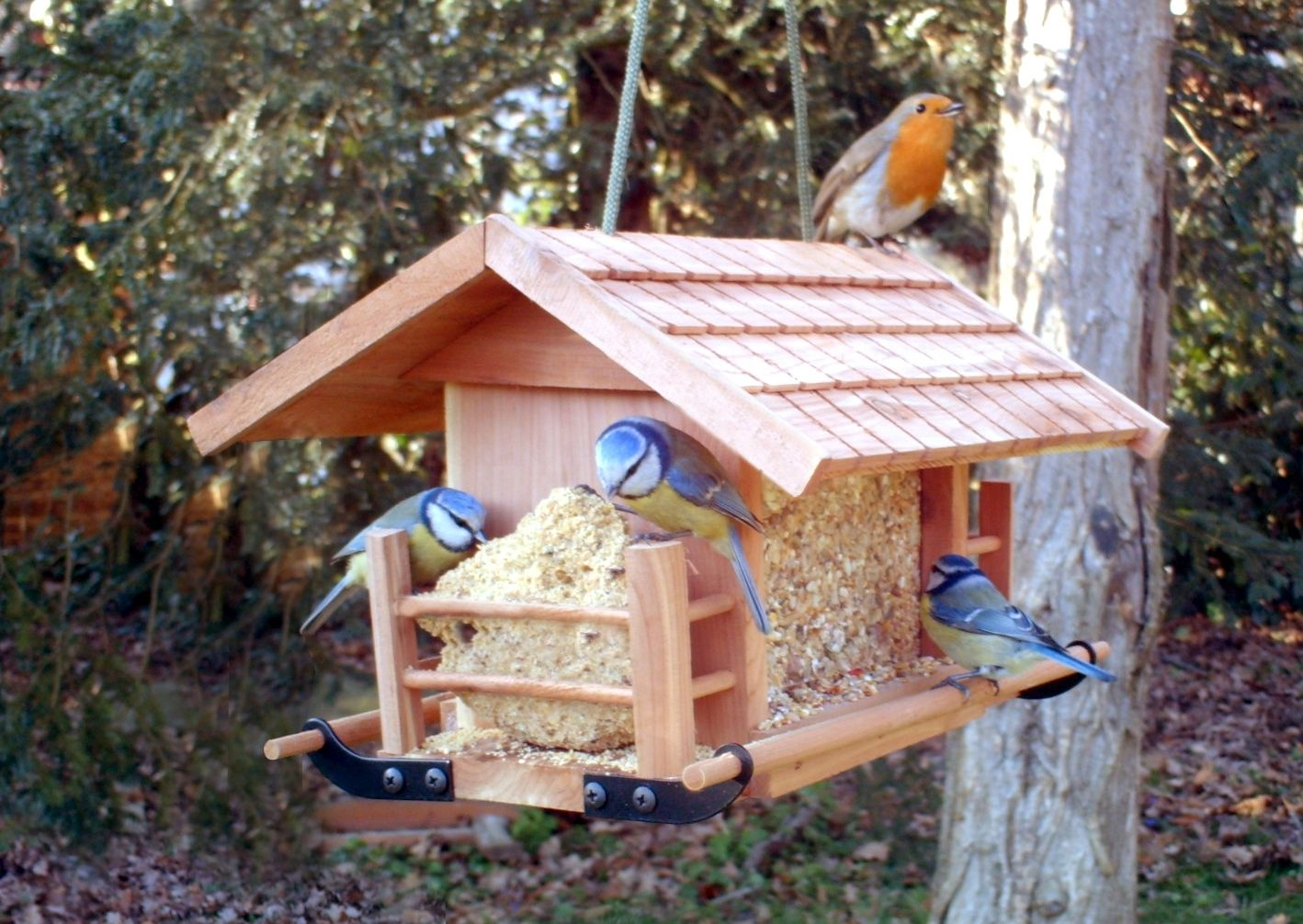 Abri Oiseau Jardin | Bird Houses, Outdoor Decor, Bird Feeders avec Abri Oiseau Jardin