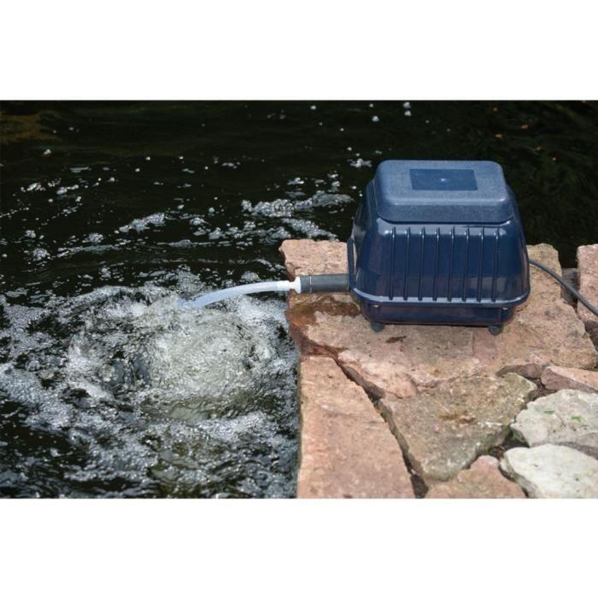 Accessoires Pour Fontaines Et Bassins Pompe A Air Pour Bassin Ubbink 4000  1351328 pour Accessoires Pour Bassin De Jardin
