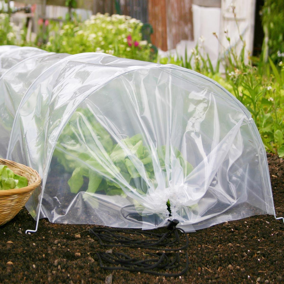 Acheter Le Bon Matériel Pour Le Potager Et Semis | Jardins ... concernant Tunnel Pour Jardin