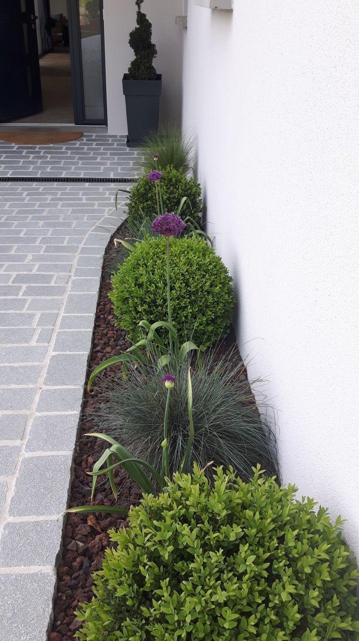 Ail Et Buis | Mara | Aménagement Jardin Devant Maison ... tout Idee Amenagement Jardin Devant Maison