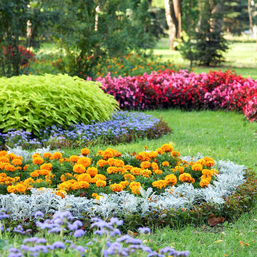 Allées, Bordures, Paliers : Découpez Votre Jardin Selon Le ... à Delimitation Jardin