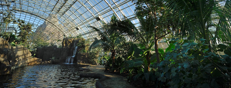 Amazon-Guyana Biozone | Parc Zoologique De Paris destiné Serre De Jardin Amazon