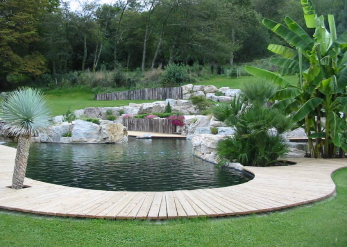 Aménagement De Bassin & Création De Piscine Naturelle À ... à Amenagement De Bassins De Jardin