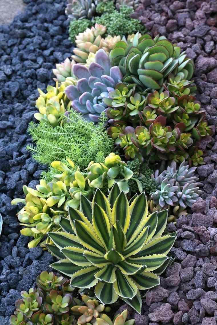 Aménagement De Jardin Extérieur Méditerranéen : Plan Pour ... encequiconcerne Amenagement Jardin Exterieur Mediterraneen
