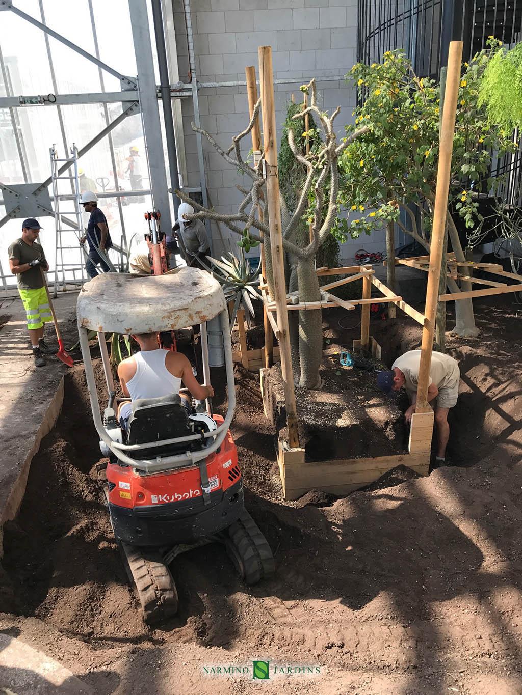 Aménagement Des Nouvelles Serres Du Jardin Exotique ... à Am2Nagement Jardin