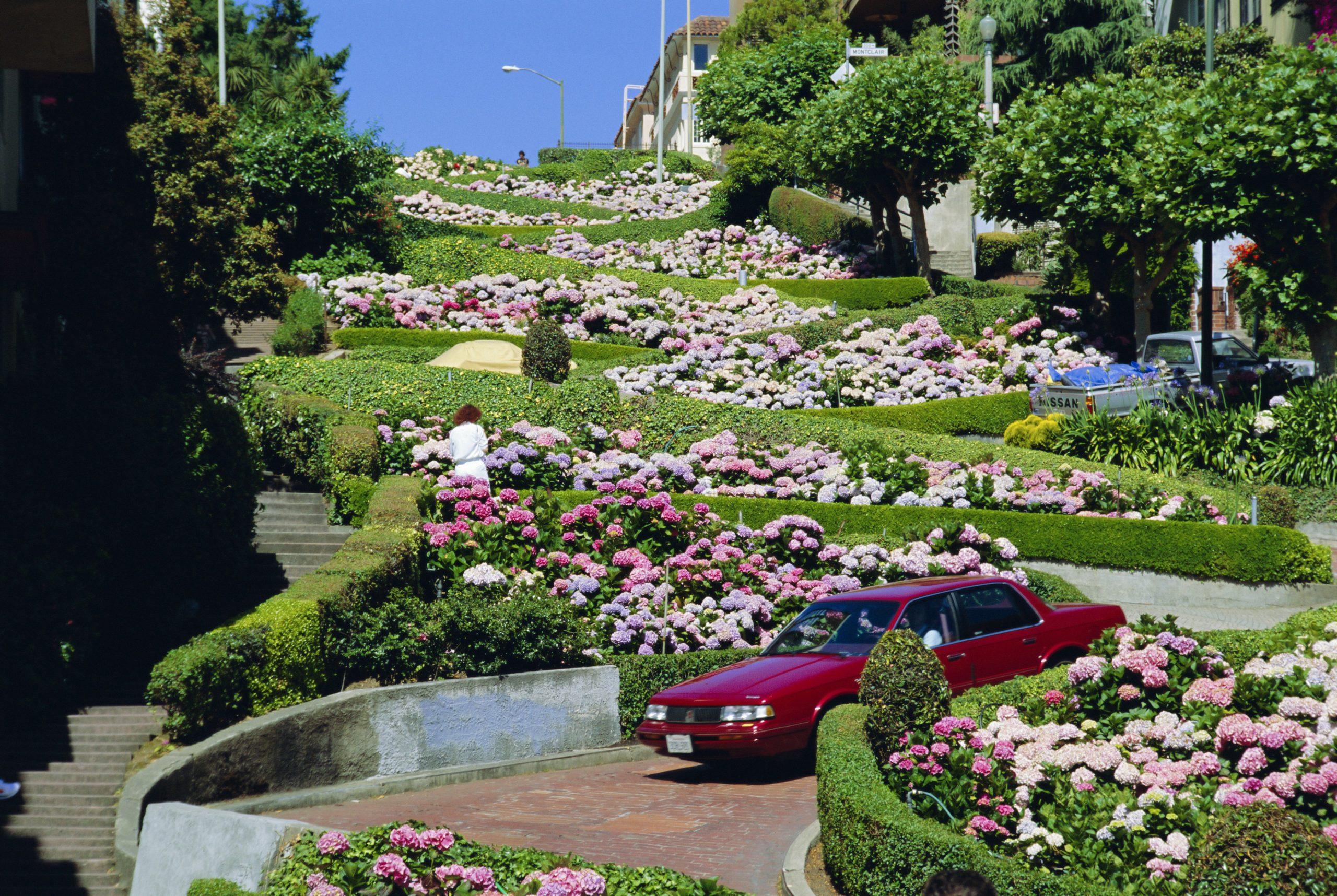 Aménagement D'un Jardin En Pente destiné Comment Realiser Un Jardin