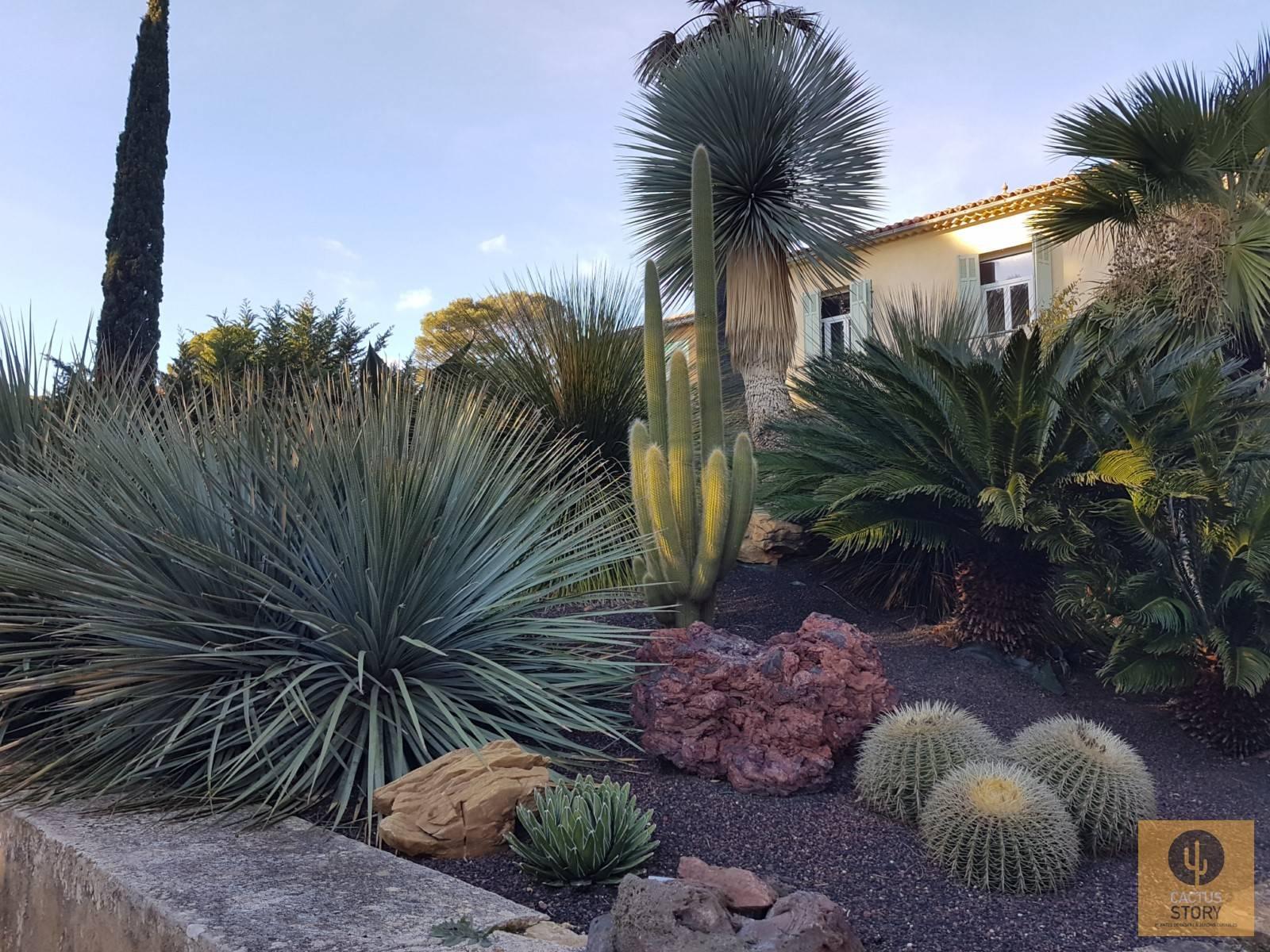 Aménagement D'un Jardin Sec Rocaille - Vente De Cactus Et ... intérieur Creer Un Jardin Sec