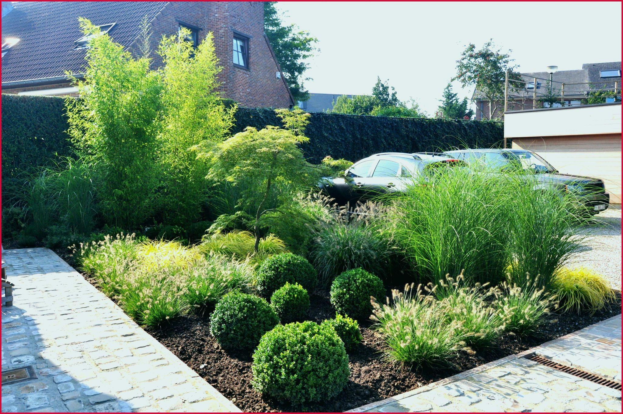 Aménagement Jardin Devant Maison Des Idées - Idees ... encequiconcerne Idee Amenagement Jardin Devant Maison