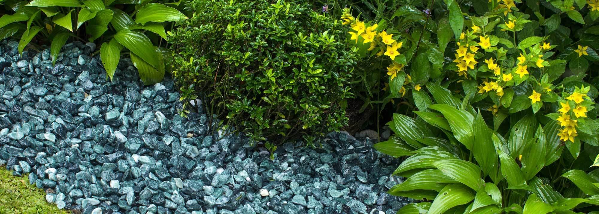 Aménagement Minéral Allées Et Massif : Décoration Et ... à Decoration Minerale Jardin