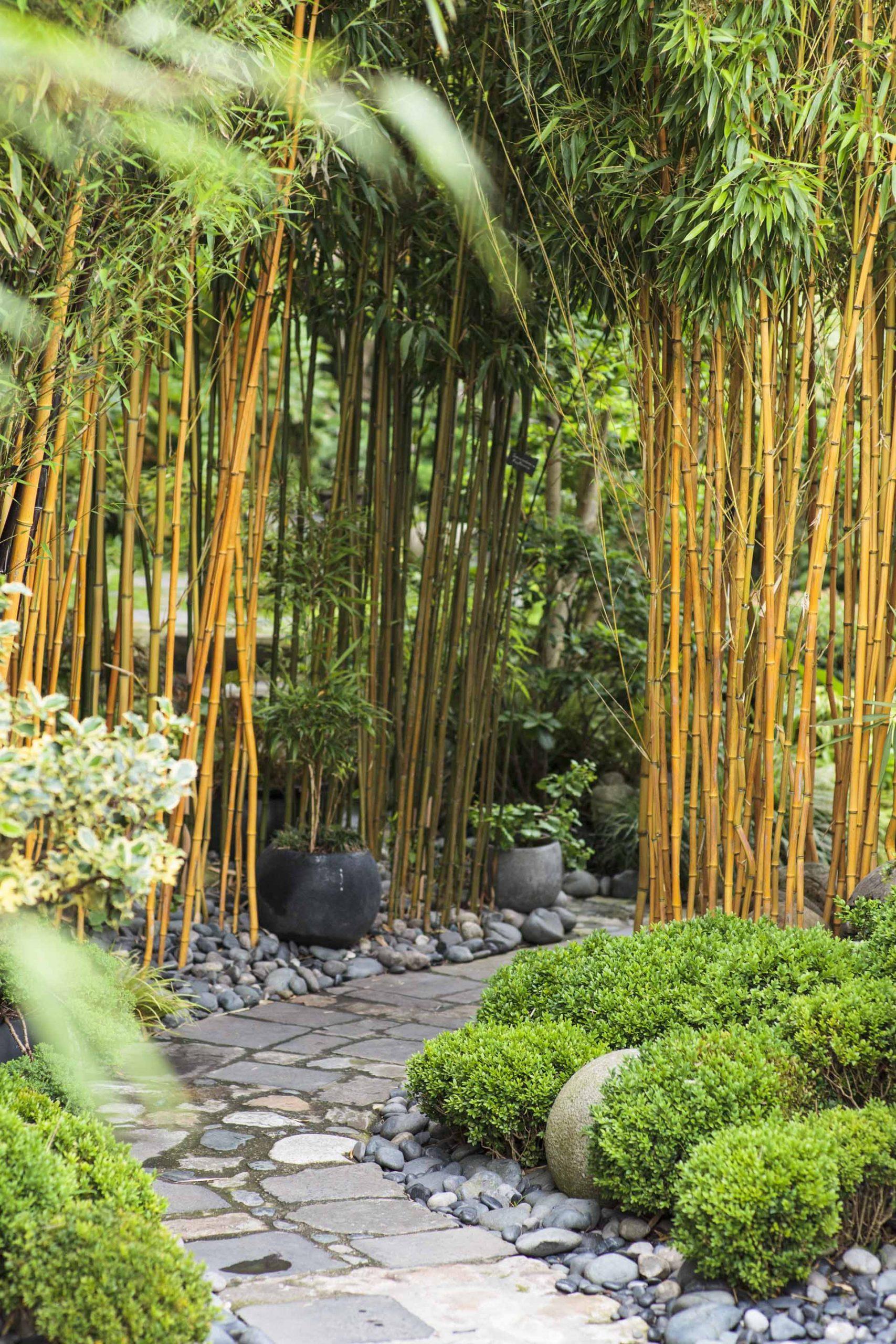 Aménager Un Jardin Japonais Chez Soi intérieur Accessoires Pour Jardin Japonais