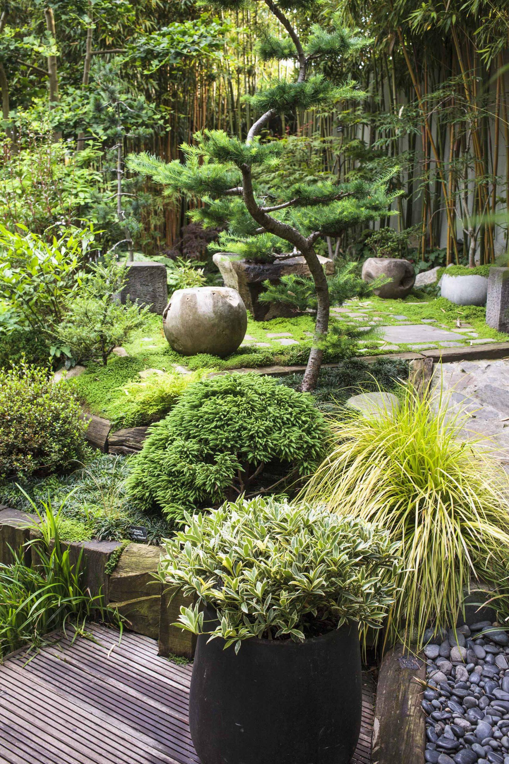 Aménager Un Jardin Japonais Chez Soi tout Jardin Japonais Sur Terrasse