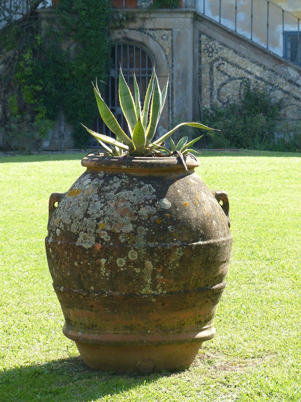Amphore Italie Vase - Photo Gratuite Sur Pixabay à Amphore De Jardin