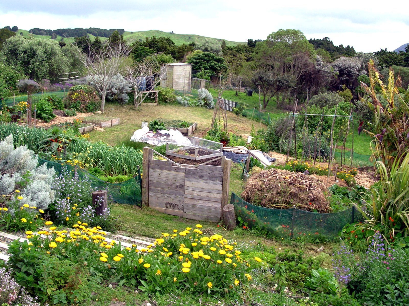 An Interview With The Ultimate Revolutionary - Bill Mollison ... encequiconcerne Forage Jardin