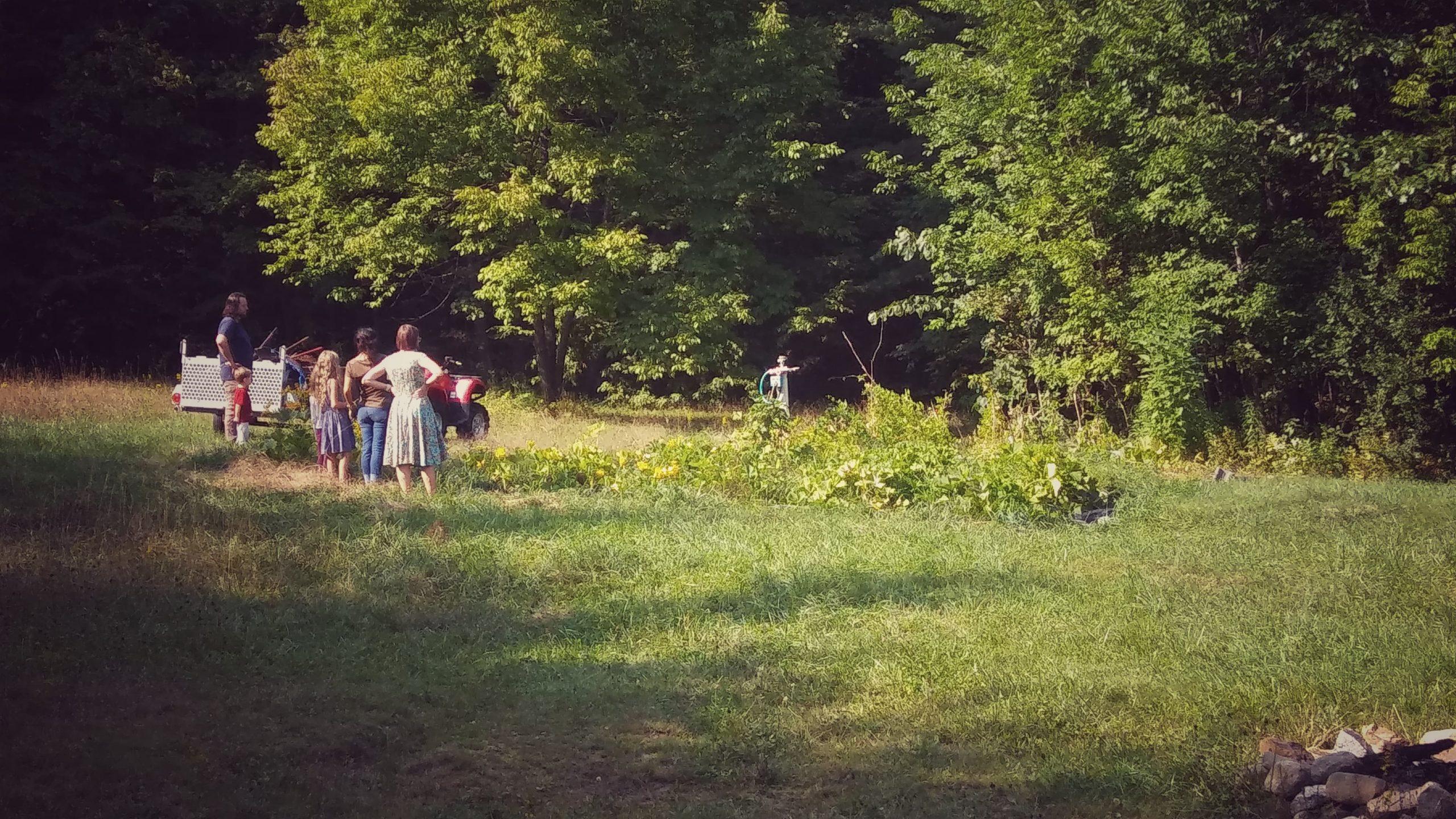 Anick | serapportantà Copeaux De Bois Jardin