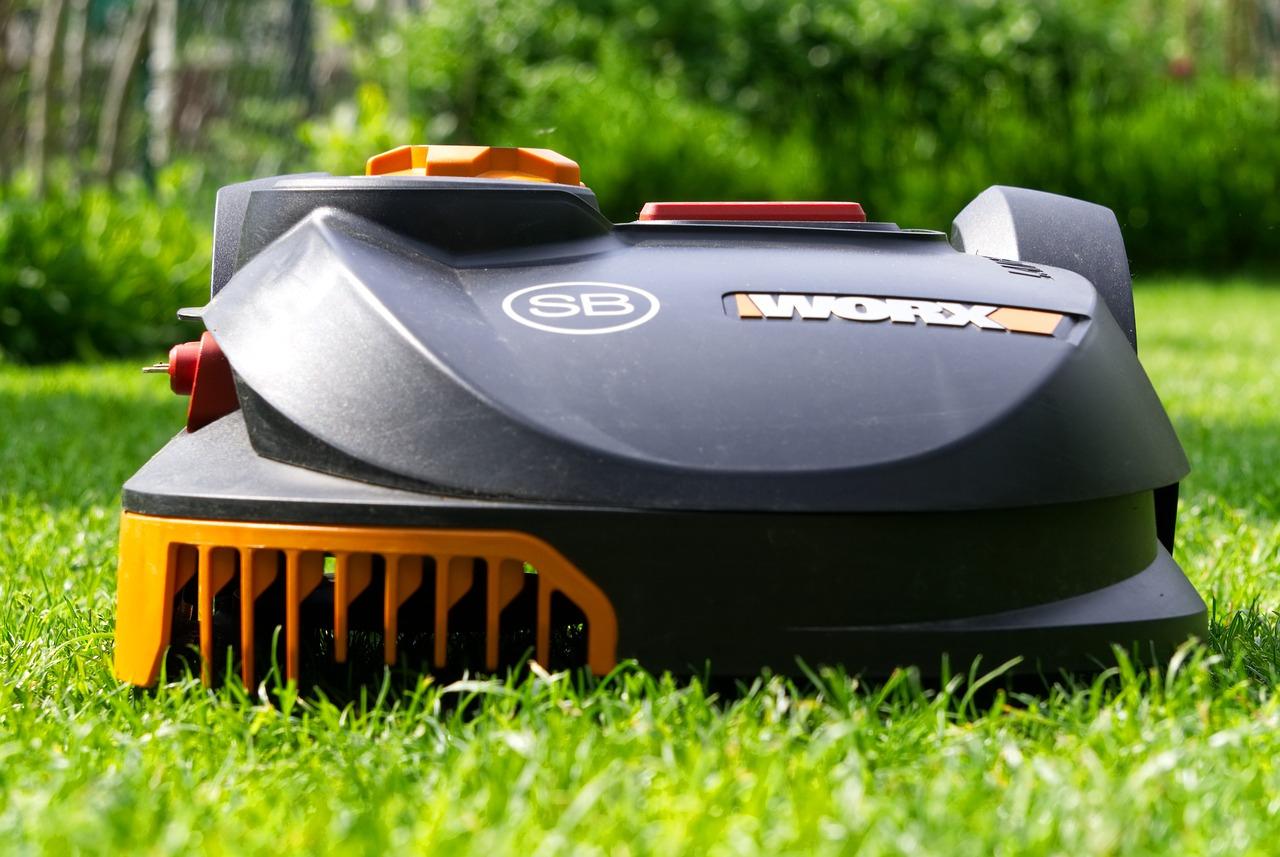 Anti-Moustiques Naturel : Des Plantes Comme Meilleurs Remède ... encequiconcerne Anti Moustique Jardin