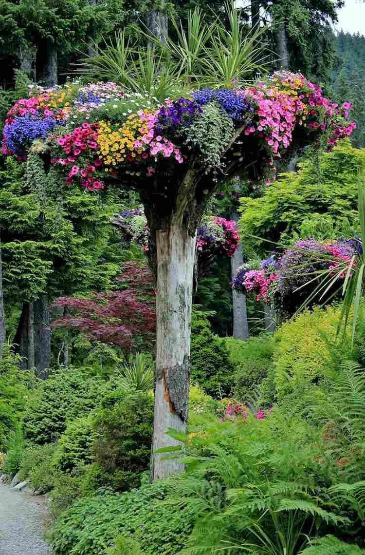 Arbre Mort, Bois Flotté Et Souche D'arbre Pour Décorer Le Jardin serapportantà Fontaine Naturelle Jardin