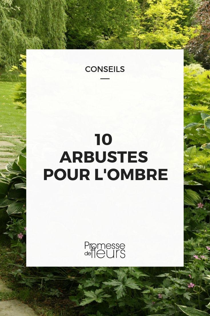 Arbuste D'ombre : Lesquels Choisir ? | Arbuste Ombre ... concernant Plante Jardin Ombre