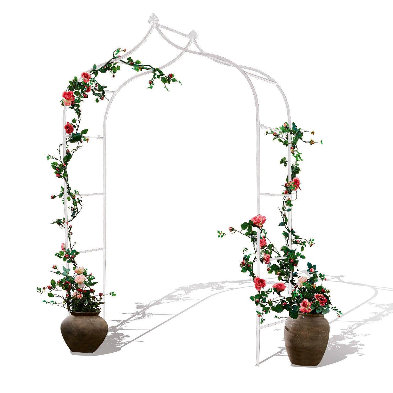 Arche À Rosier Dimarus intérieur Arche De Jardin En Fer Forgé