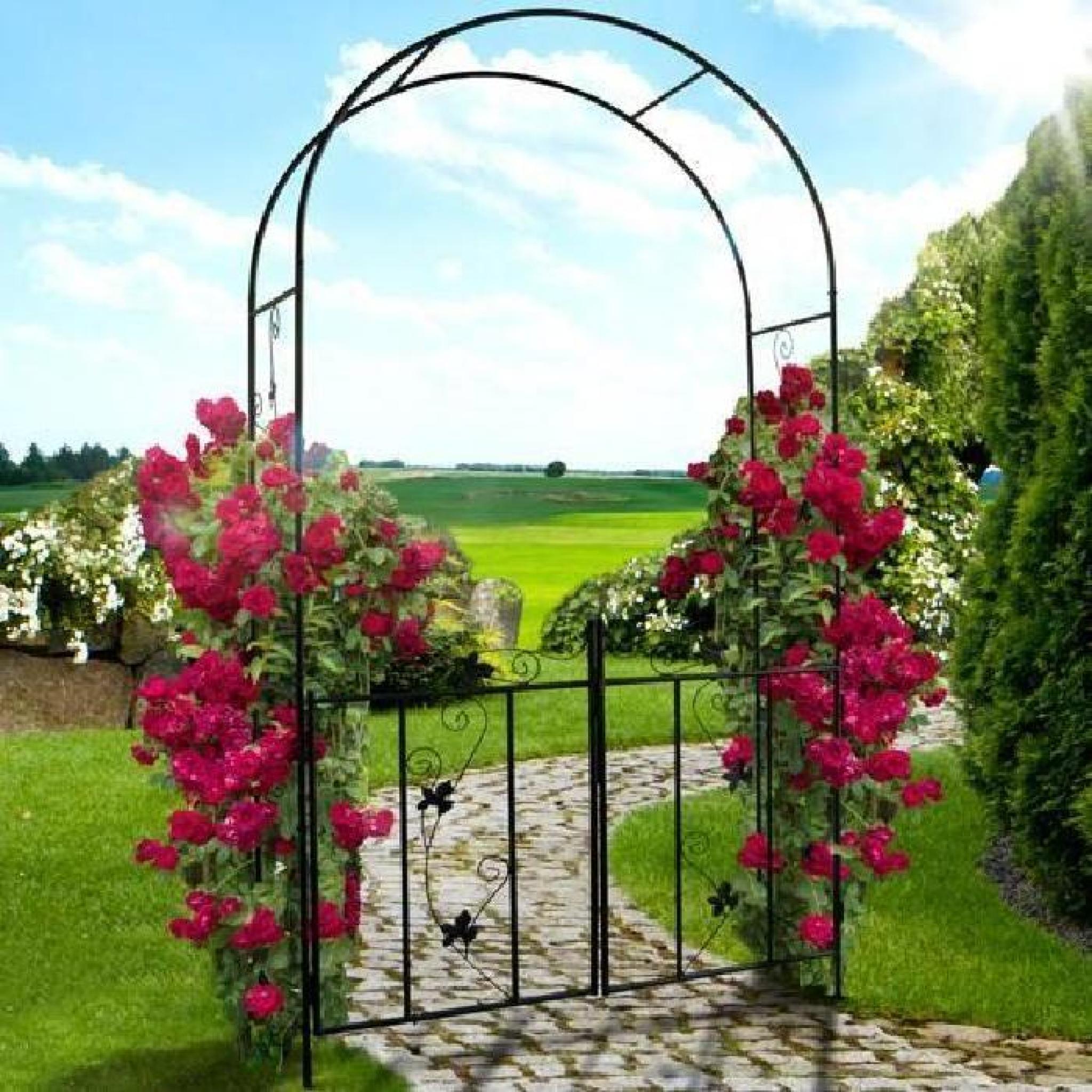 Arche À Rosiers De Jardin - Avec Portillon - 110 X 214 X 38 Cm - En Acier concernant Arche De Jardin Pas Cher