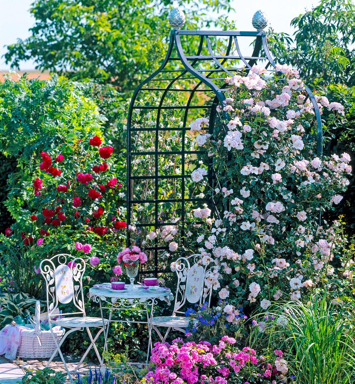 Arche De Jardin, Portique : Supports Pour Plantes Grimpantes ... pour Arche De Jardin En Fer