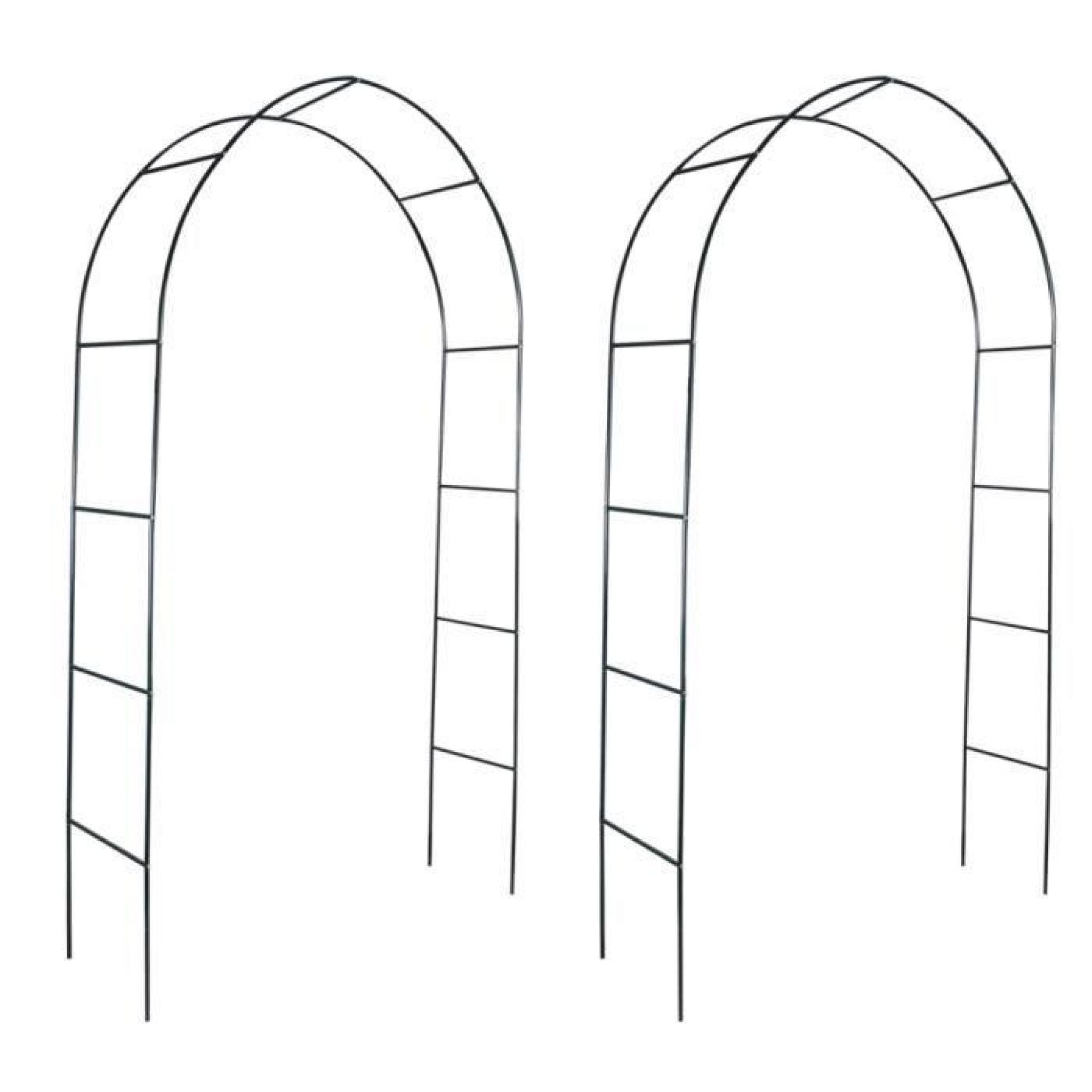 Arche De Jardin Pour Des Plantes Grimpantes avec Arche De Jardin Pas Cher