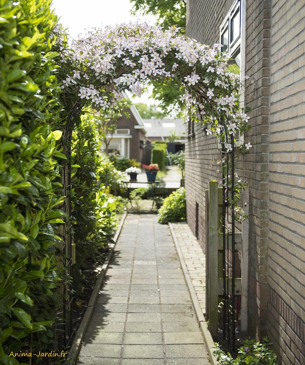 Arche En Acier, Décoration Du Jardin, Pergola, Allée, Rosier ... intérieur Arche De Jardin Pas Cher