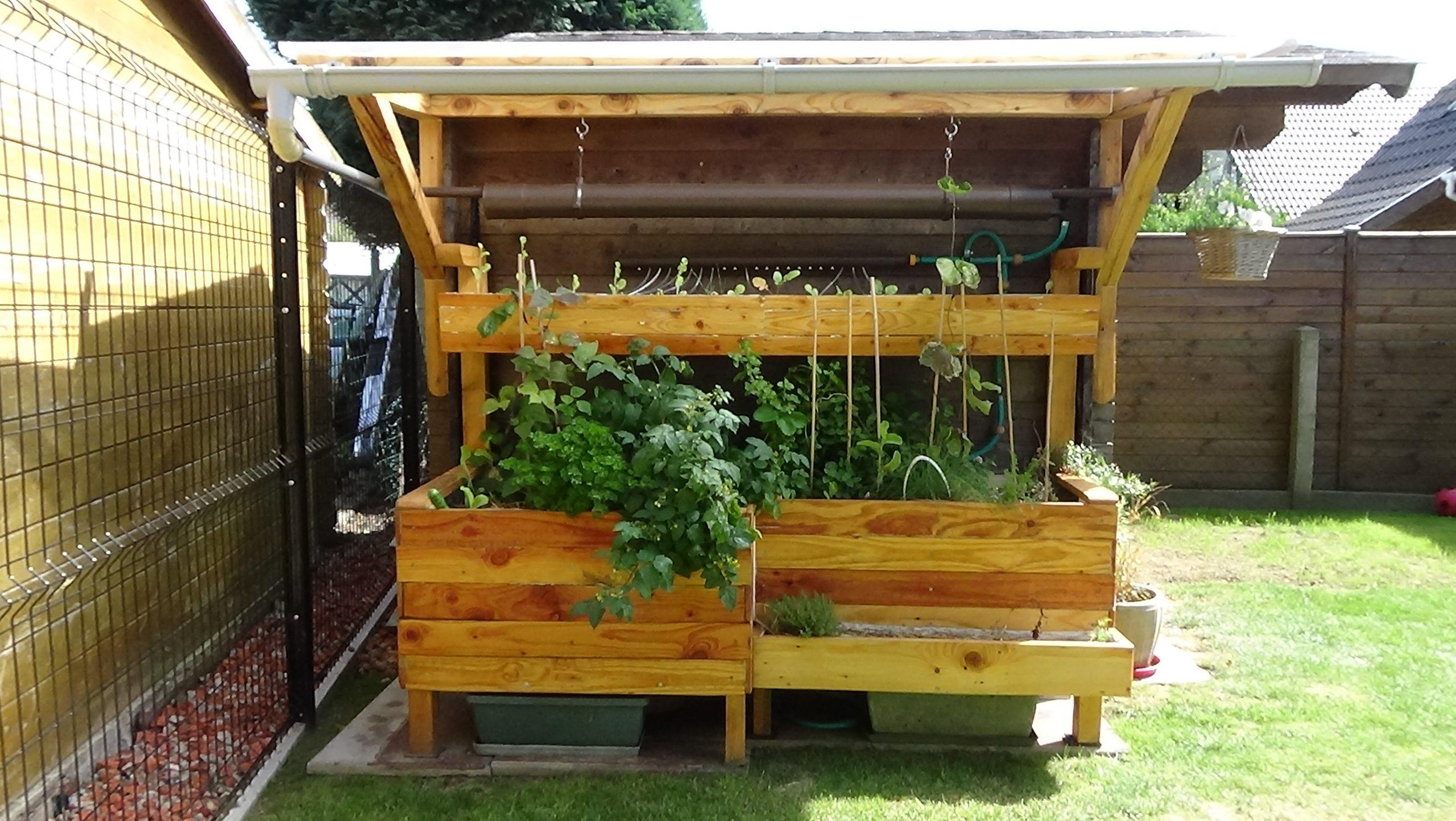 Arrosage Automatique De La Cascade De Légumes dedans Systeme Arrosage Jardin Potager