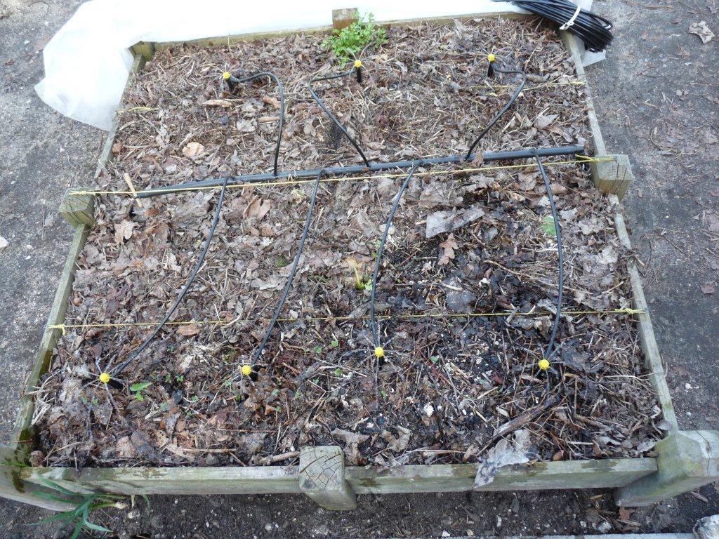 Arrosage Automatique Du Potager En Carrés - Mon Potager En ... destiné Systeme Arrosage Jardin Potager
