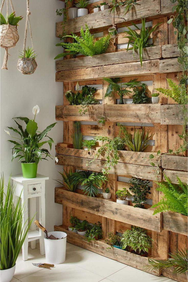 Art Plant Agave Green - Vivir Verde - #   Decoration Jardin ... intérieur Jardin En Pots Potager