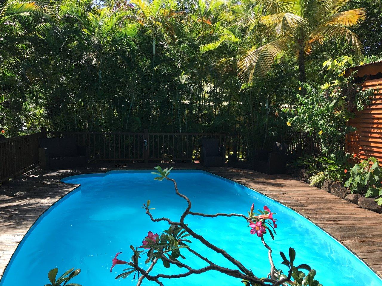 Au Jardin Des Colibris Ecolodge&spa: Bewertungen, Fotos ... encequiconcerne Au Jardin Des Colibris