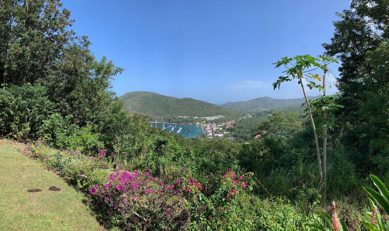Au Jardin Des Colibris Hotel (Deshaies, Guadeloupe) : Tarifs ... serapportantà Au Jardin Des Colibris