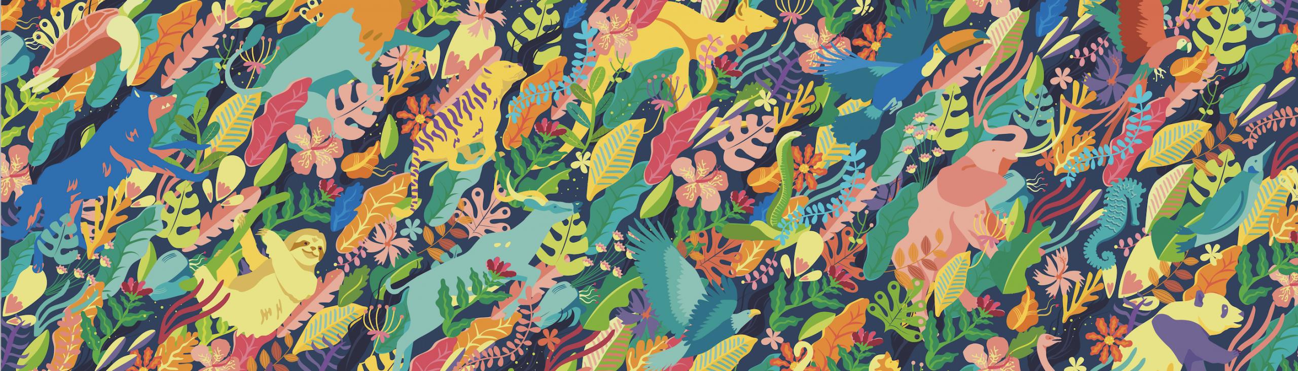 Avaaz - Duque - Letters For Life On Earth avec Serre De Jardin Amazon