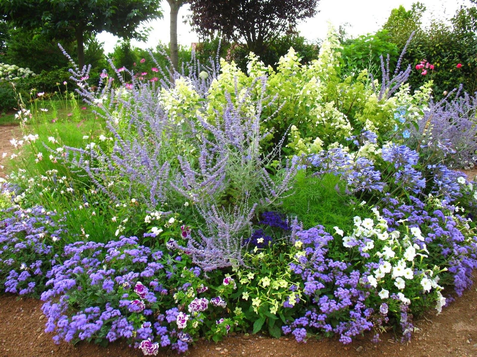 Avoir Un Jardin Fleuri Toute L'année (Sans Connaissance) destiné Modèle De Jardin Fleuri