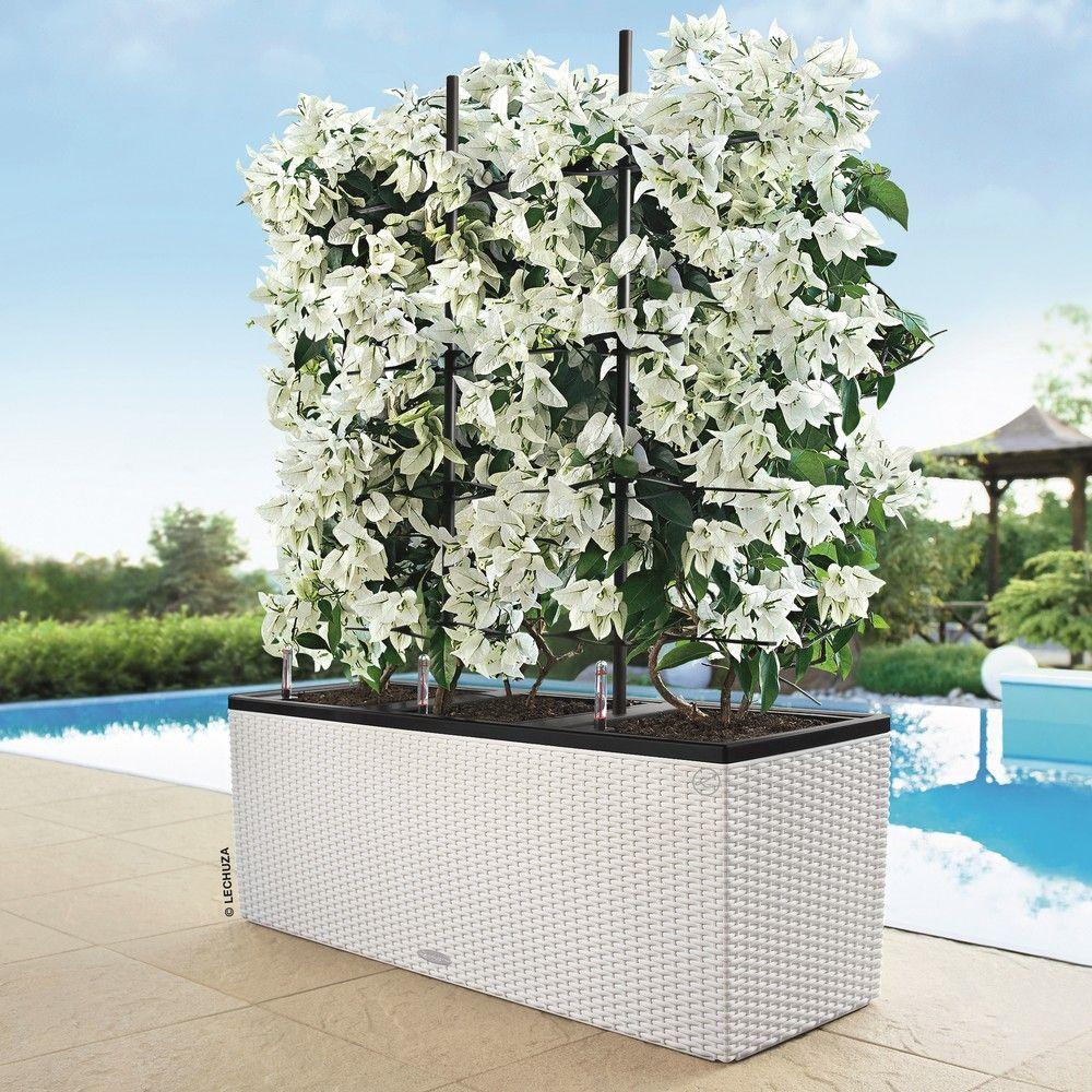 Balconnières Cm Blanc concernant Treillis Blanc Jardin