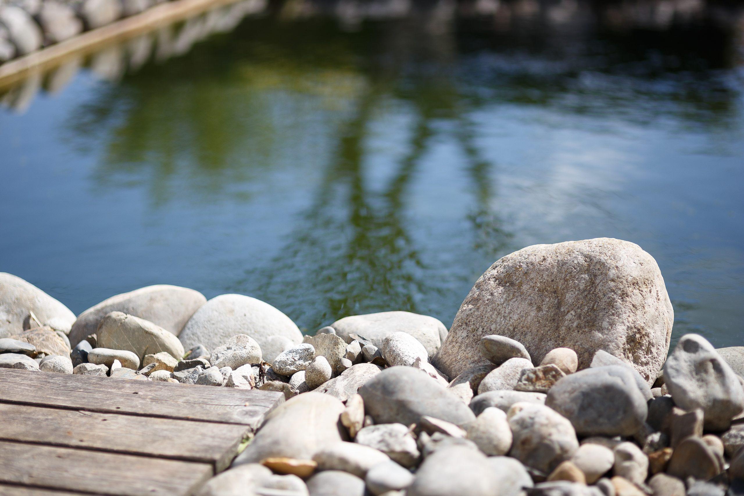 Bassin De Jardin 25M3 - Kit Bassin Imagineo Avec Etanchéité ... serapportantà Kit Bassin De Jardin