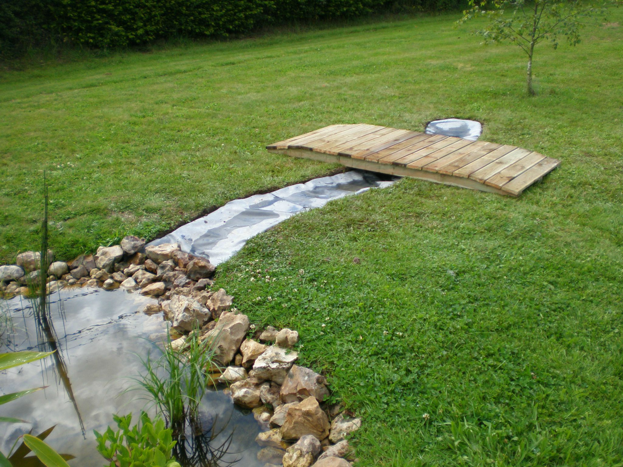 Bassin De Jardin Avec Ruisseau avec Petit Jardin Avec Bassin